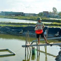 """Cách làm hay để đưa cá lồng """"vượt sông"""" tránh lũ"""