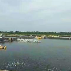 Hải Phòng tăng tốc phát triển thủy sản