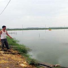 Hà Tĩnh: Khắc phục sản xuất nuôi trồng thủy sản sau mưa lũ