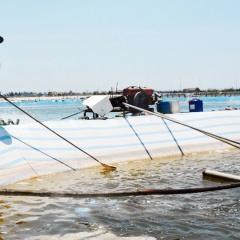 Nam Định: Quản lý chặt chẽ chất lượng vật tư nuôi thủy sản
