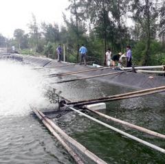 Bảo vệ hồ đập nuôi trồng thủy sản trong mùa mưa lũ