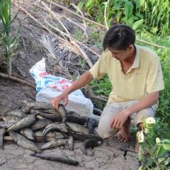 Ô nhiễm sông Cái Lớn: Dân nuôi thủy sản mỏi mắt chờ bồi thường