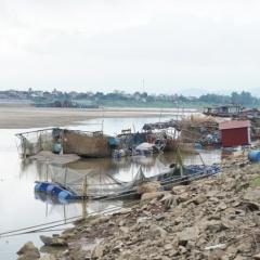 Phú Thọ: Sông Đà cạn nước, người dân nuôi cá lồng lâm cảnh nợ nần