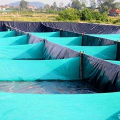 """Ứng dụng công nghệ """"zíc zắc"""" lọc nước nhanh trong nuôi tôm vụ đông ở Nghệ An"""