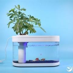 Bể cá di động chạy điện và không cần thay nước thường xuyên