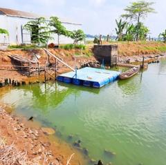 Đại gia thủy sản trốn đi nước ngoài: Nông dân đón Tết trong nợ nần