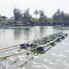 Thu phí nước thải trong lĩnh vực thủy sản: Chưa chặt chẽ