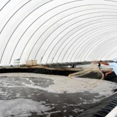 Hiệu quả từ quy hoạch vùng nuôi, trồng thủy sản trọng điểm