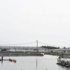 Tăng cường quản lý môi trường trong nuôi trồng thủy sản