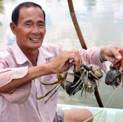 """Nuôi tôm, cua """"khác người"""", 1 nông dân tỉnh Cà Mau lãi tiền tỷ"""