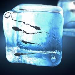 6 yếu tố ảnh hưởng đến việc bảo quản tinh trùng cá mú