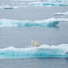 Nam Cực ấm lên nhanh gấp ba lần mức tăng trung bình toàn cầu