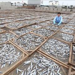 """""""Cú hích"""" nâng cao giá trị sản phẩm thủy sản"""