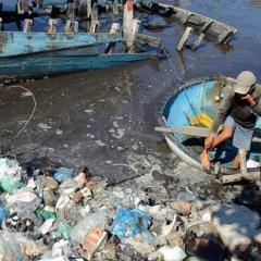 Cần xử lý dứt điểm ô nhiễm tại cảng cá Sa Huỳnh