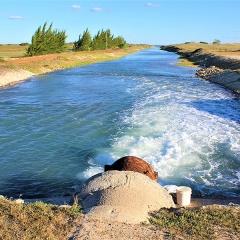 Xử lý hiệu quả nước thải nuôi thủy sản bằng tập đoàn vi khuẩn