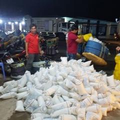 Bạc Liêu: Tràn lan tôm giống kém chất lượng ngay từ đầu vụ