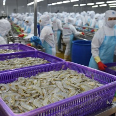 Mỹ, Trung Quốc tăng nhập khẩu tôm Việt Nam