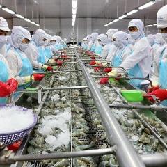 Xuất khẩu cá tra giảm mạnh, xuất khẩu tôm lại tăng