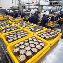 Mỹ và EU đều tăng mua cá ngừ đóng hộp