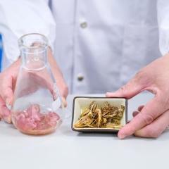 Tạo ra chitosan kháng khuẩn tan trong nước từ vỏ tôm thẻ