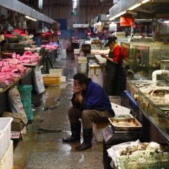 Trung Quốc quy kết thủy sản gây bùng phát dịch COVID-19 ở Đại Liên
