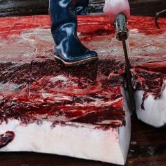 Nhu cầu thịt cá voi ở Na Uy tăng lại