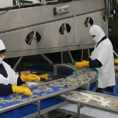 """Cam kết tôm không """"dính"""" COVID-19,  Ecuador thắt chặt an toàn sinh học"""