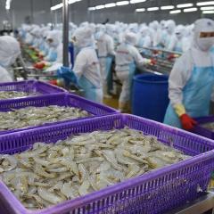 Doanh nghiệp thủy sản gặp bất lợi do chính sách?