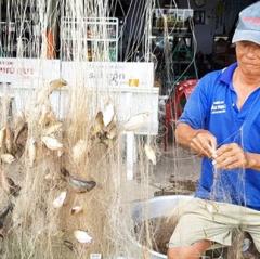 Nhộn nhịp mùa đánh bắt thủy sản vùng lũ