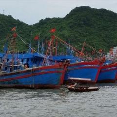 Việt Nam và Trung Quốc sớm thống nhất vùng đánh cá chung