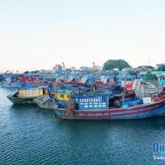 Hơn 500 tàu giã cào nằm bờ: Tiền tỷ phơi nắng dầm mưa
