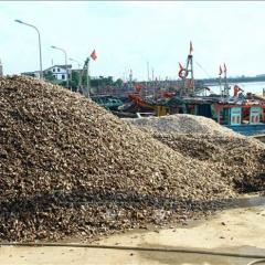 Vỏ ốc được đổ tràn lan tại cảng cá Lạch Vạn làm cản trở dòng chảy