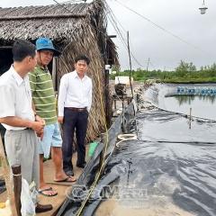 Sử dụng điện an toàn trong mùa mưa