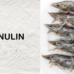 Ứng dụng trên đa loài của Inulin trong thủy sản