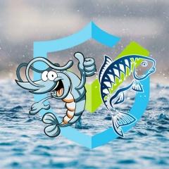 Giải pháp cấp cứu cho tôm cá trong mùa mưa