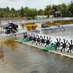 Thay đổi tư duy làm nông nghiệp ở đồng bằng sông Cửu Long
