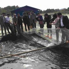 Bắc Giang khai thác tối đa tiềm năng mặt nước để phát triển thủy sản