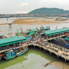 Cần tạo thuận lợi cho các cảng cá hoạt động hiệu quả