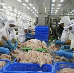 Trung Quốc tăng kiểm soát hàng thủy sản nhập khẩu, doanh nghiệp cá tra nên bình tĩnh
