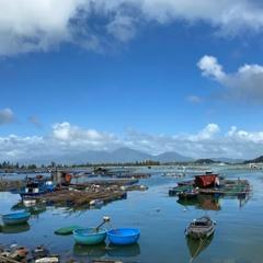 Đà Nẵng: Khó giải tỏa lồng bè nuôi cá trái phép