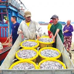 Gắn khai thác với chế biến, xuất khẩu thủy hải sản