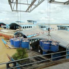 Ứng dụng công nghệ cao vào sản xuất chuyên canh