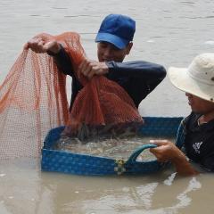 Top 10 tin thủy sản đáng đọc nhất năm 2020