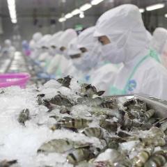 Chính phủ yêu cầu theo dõi tình hình ách tắc xuất khẩu thủy sản sang Trung Quốc