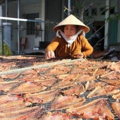 Làng khô xứ biển Trần Đề tấp nập vào vụ Tết