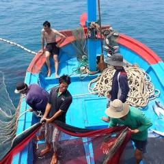 Kỳ vọng bước phát triển mới trong khai thác hải sản