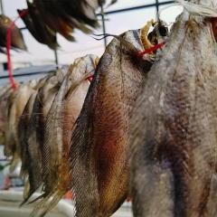 Hậu Giang: Giá khô cá lóc, cá bổi tăng