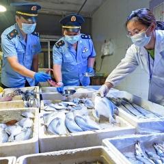 Trung Quốc phát hiện 47 mẫu thủy sản nhập khẩu nhiễm virus corona
