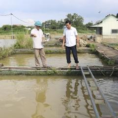 Phú Thọ đẩy mạnh nuôi trồng thủy sản