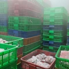 TP:HCM: Gần 5.600 kg thủy sản, thịt bẩn suýt lên bàn ăn